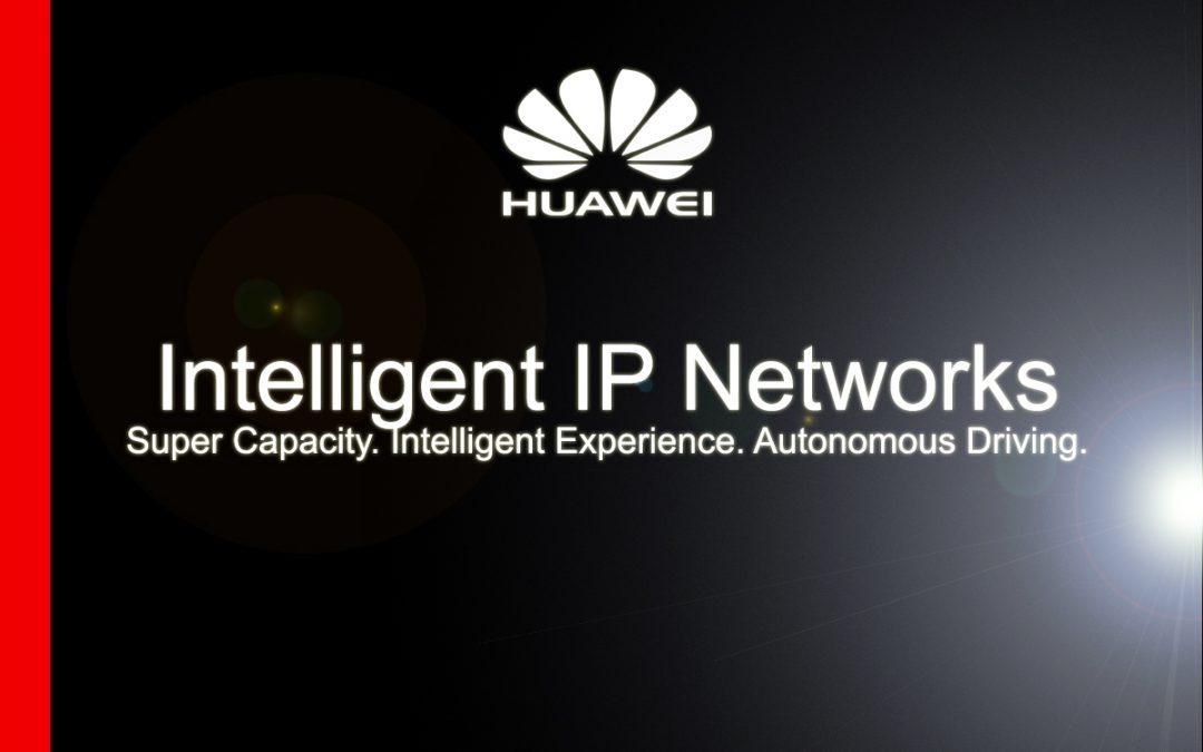 Intelligent IP Networks